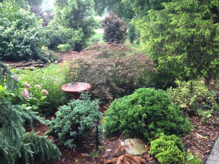 blog - trial gardens